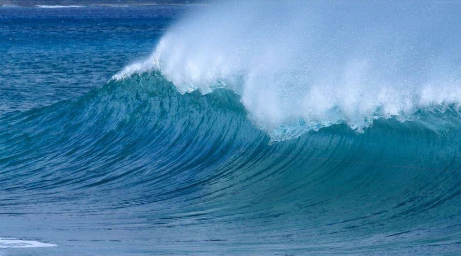 Wereld Oceanen Dag: een dag om te vieren!