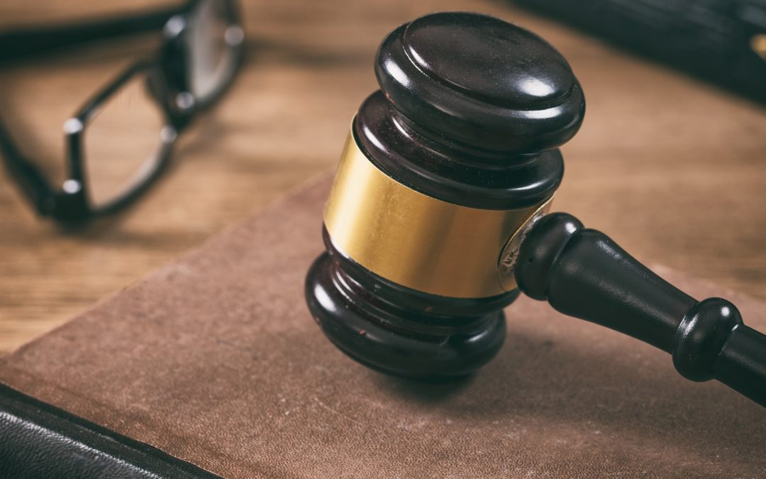 'Jongeren: uitspraak Hoge Raad Urgenda-zaak maakt 2020 tot jaar van actie'