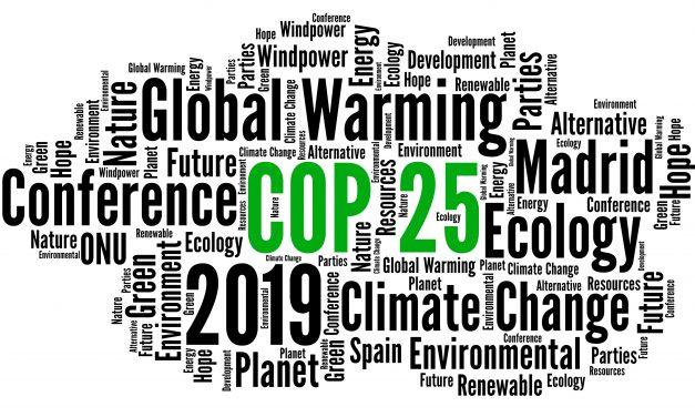 Jongerenparticipatie in klimaatbeleid: Nederland deelt ervaringen op COP25