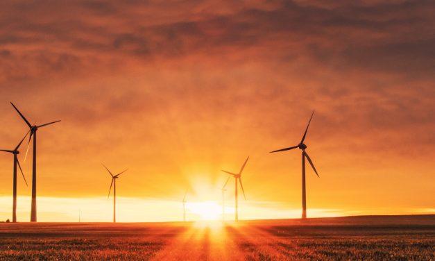 Stel een klimaatautoriteit aan, die kan actie afdwingen