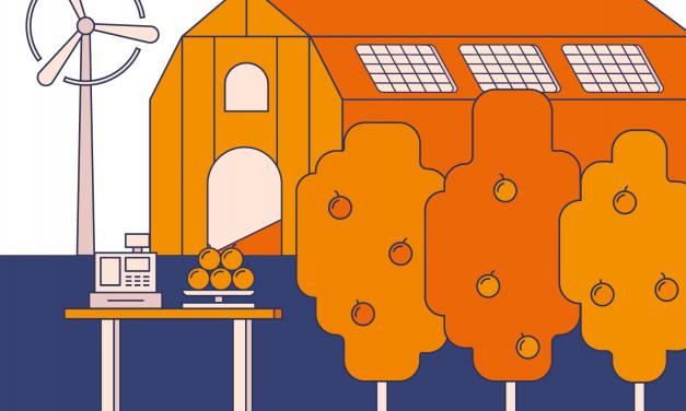 Transitieplan voeding – De eiwittransitie: net zo belangrijk als de energietransitie, maar nog geen prioriteit?